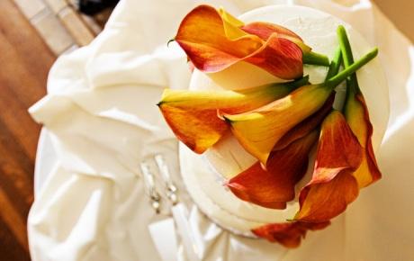 muckenthaler_mansion_wedding_00051