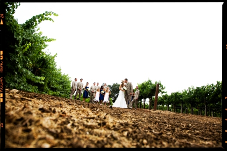 Bridal Party at Gainy Vineyard Wedding