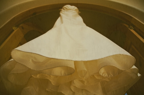 Wedding dress in sepia