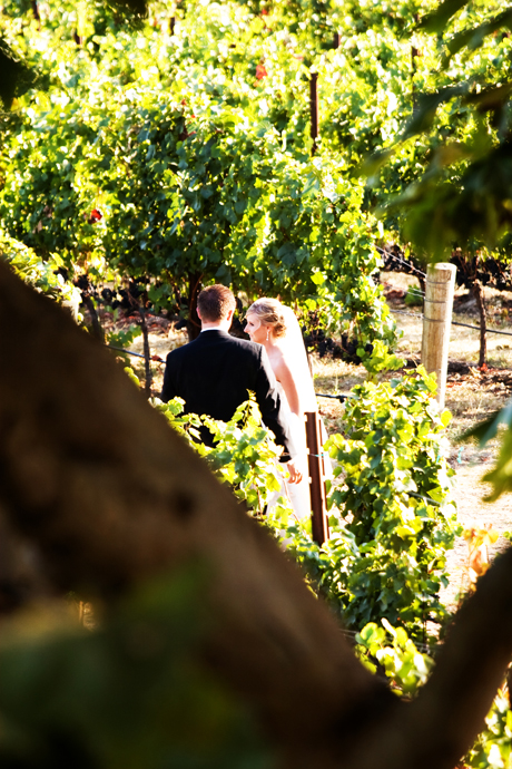 Winery Wedding in Santa Barbara