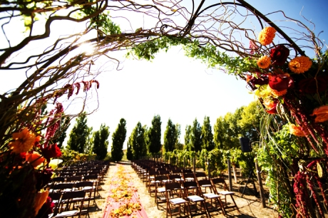 Santa Barbara Vineyard Wedding