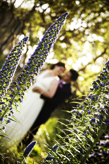 Wedding Photography at Chase Palm Park