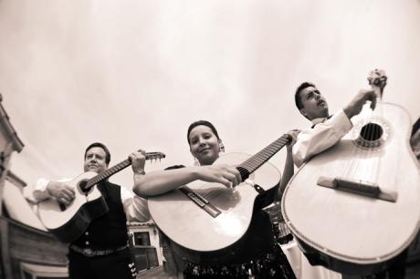 Casa Del Camino Wedding Pictures