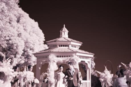 Infrared Wedding Ceremony