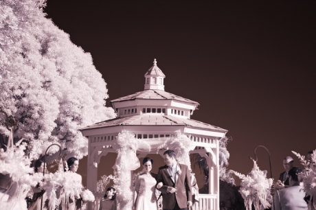 Infrared Wedding Ceremony
