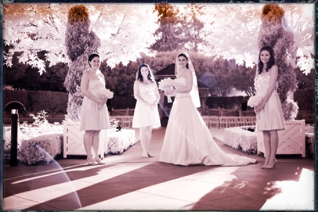 Infrared Wedding Pictures at the Disneyland Hotel