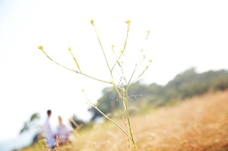 Carpinteria Bluffs Engagement Photography