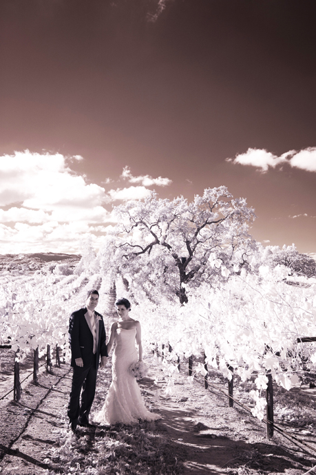 Infrared Wedding Photography at Robert Hall Winery