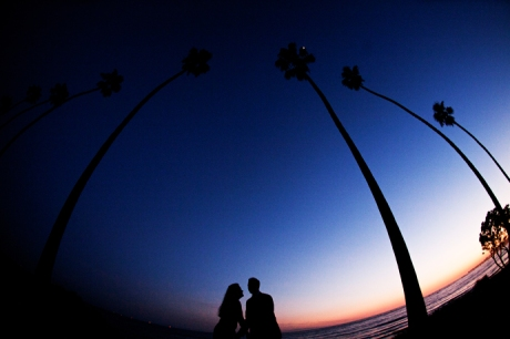Butterfly Beach Wedding Pictures