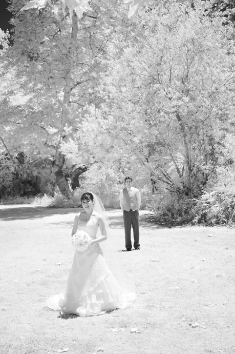 Infrared Wedding Pictures at William R. Mason Park