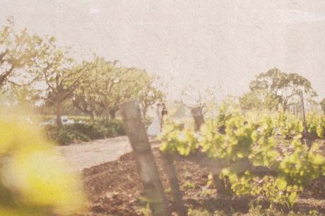 Rustic Wedding at Gainey Vineyard