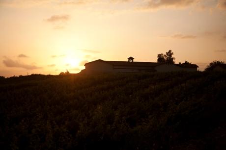 Van Roekel Winery