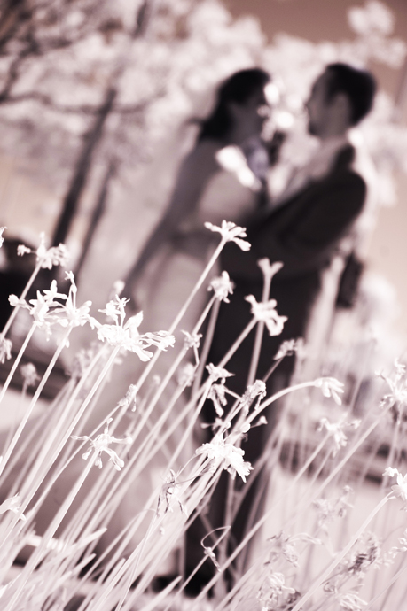 Infrared Wedding Pictures in Long Beach