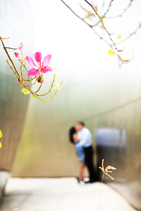 Disney Concert Hall Engagement Pictures