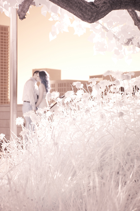 Infrared Engagement Photogarphy