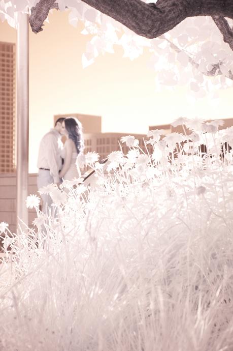 Infrared Engagement Photogarphy