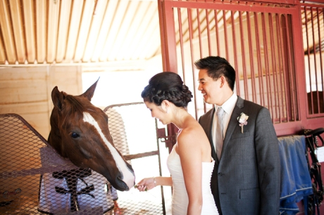 Equestrian Center Wedding