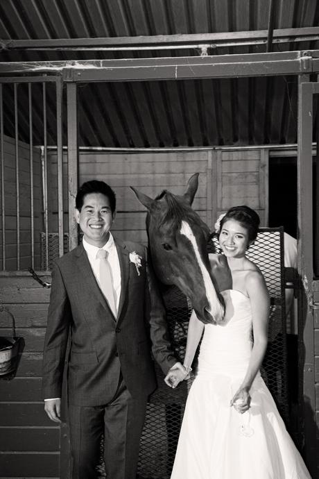 Red Horse Barn Wedding