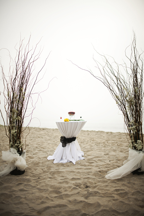 Beach Wedding San Diego