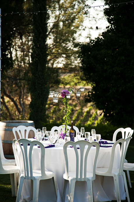 Falkner Vineyard Wedding Reception
