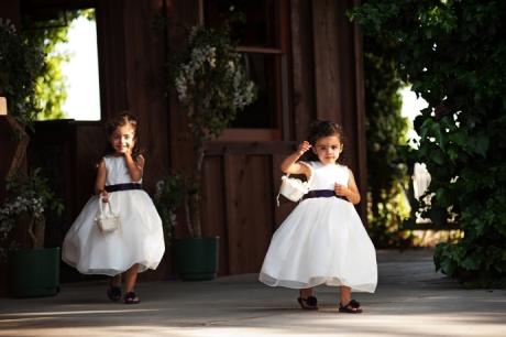 Falkner Winery Wedding