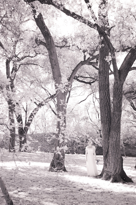 Infrared Wedding Pictures Descanso Gardens