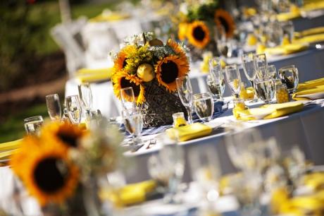 Orange County Heritage Museum Wedding Reception