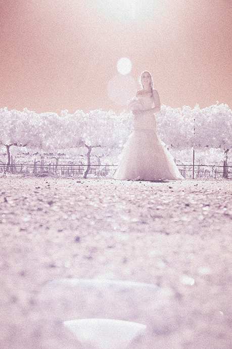 Infrared Wedding Pictures, Infrared Wedding Photography, Infrared Wedding Photographer, Santa Barbara Wedding Photographer, Santa Barbara Wedding Photography, Santa Barbara Wedding Pictures, Firestone Vineyard Wedding, Firestone Vineyard Wedding Photography, Firestone Vineyard Wedding Pictures, Rustic Wedding, Firestone Vineyard Wedding Ceremony, Firestone Vineyard Wedding Reception, Vineyard Wedding, Winery Wedding, Santa Ynez Wedding Photographer, Santa Ynez Wedding Pictures, Sant Ynez Wedding Photography