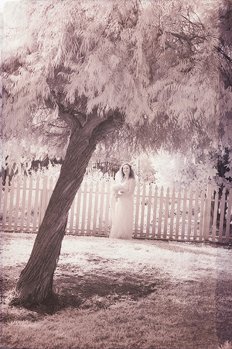 Infrared Wedding Photography, Infrared Wedding Pictures, Infrared Wedding Photos, Newland House Museum Wedding, Newland House Museum Wedding Photos, Newland House Museum Wedding Ceremony, Newland House Museum Wedding Pictures, Newland  House Museum Wedding Reception, Film Photography