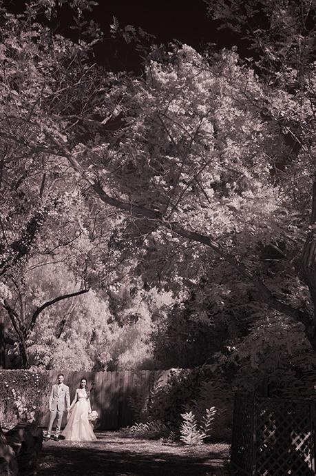 Rancho Los Cerritos Wedding, Rancho Los Cerritos Wedding Pictures, Rancho Los Cerritos Wedding Photos, Rancho Los Cerritos Wedding Images, Rancho Los Cerritos Wedding Photography, Rancho Los Cerritos Wedding Ceremony, Rancho Los Cerritos Wedding Reception, Los Cerritos Ranch House Wedding, Los Cerritos Ranch House Wedding Pictures, Los Cerritos Ranch House Wedding Photos, Los Cerritos Ranch House Wedding Images, Los Cerritos Ranch House Wedding Photography, Los Cerritos Ranch House Wedding Ceremony, Los Cerritos Ranch House Wedding Reception, Long Beach Wedding Photographer, Ranch Wedding, Ranch Wedding Pictures, Ranch Wedding Photos, Ranch Wedding Images, Ranch Wedding Photography