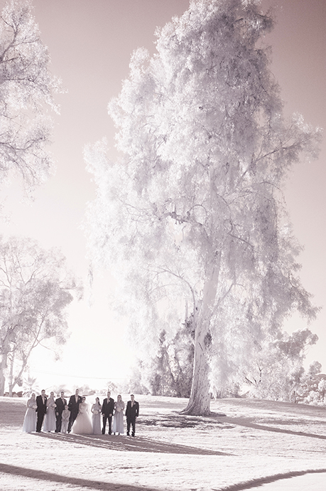 Wedgewood San Clemente Wedding Pictures - Bridal Party
