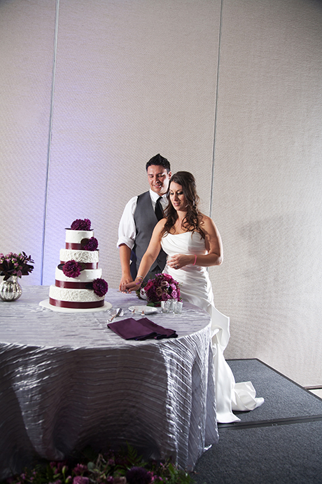 Hotel Irvine Wedding Reception - Cake Cutting