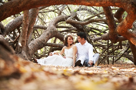 Los Angeles Arboretum Engagement Pictures