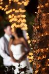 Abbott Manor Wedding