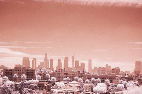 Infrared Photography Los Angeles