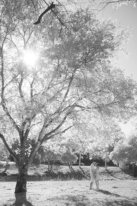 Infrared Photography Mission Park Santa Barbara