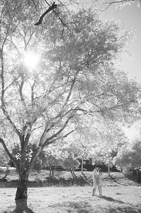 Infrared Photography Mission Park Santa Barbara