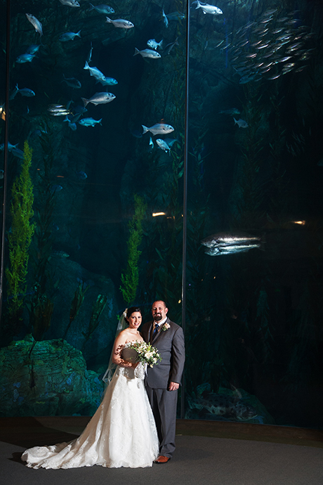 Long Beach Aquarium of the Pacific Wedding