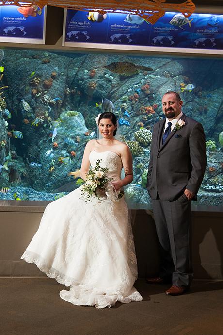 Long Beach Aquarium of the Pacific Wedding