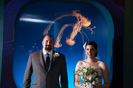 Aquarium of the Pacific Wedding Photography