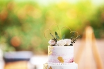 Ranch_Wedding_25